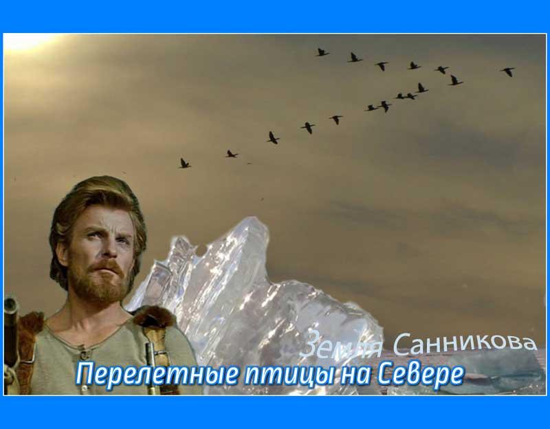 Перелетные_птицы_Севера