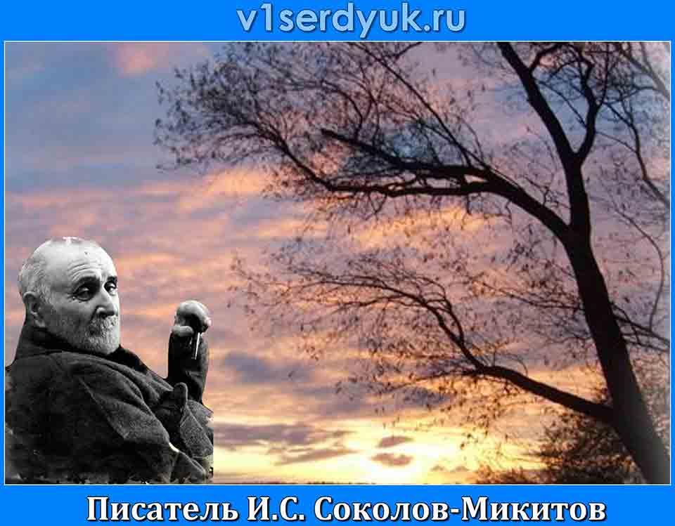 Писатель_Иван_Соколов-Микитов