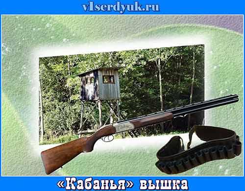 Охотничья_вышка_в_заповеднике