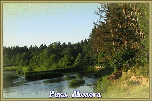 Живописные_места_Лесного_района